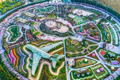 Dubai Miracle Garden 1-12