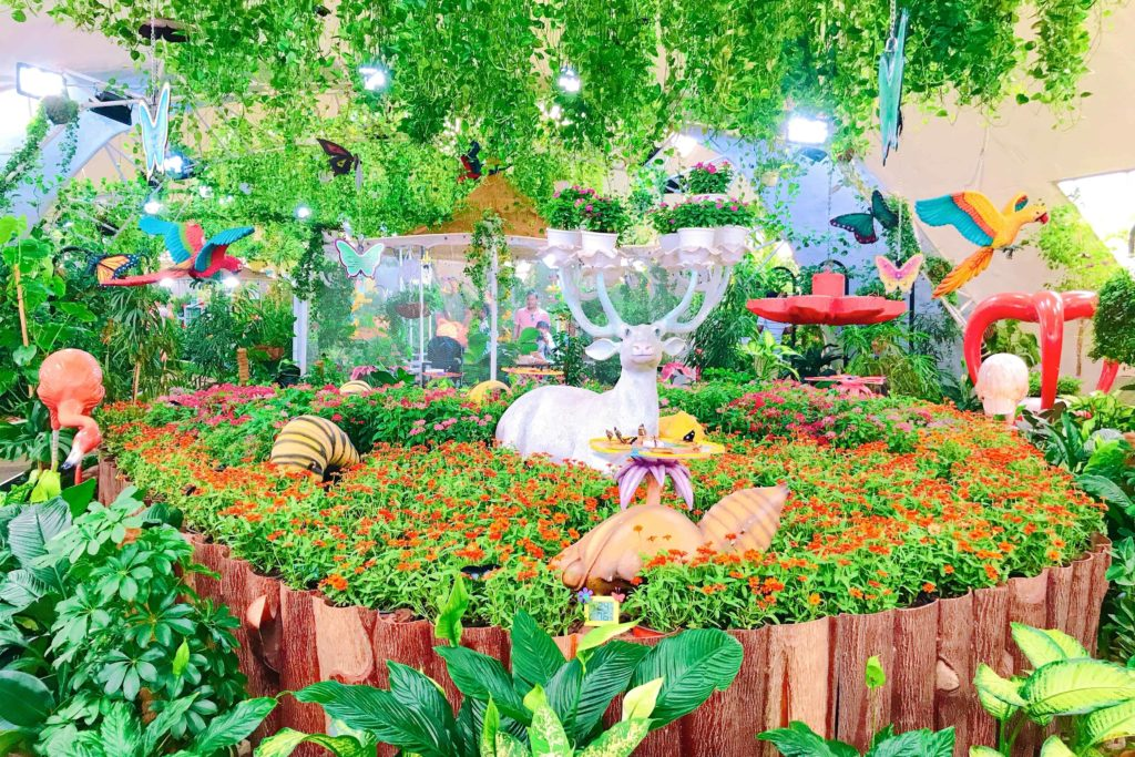 Dubai Butterfly Garden バタフライガーデン