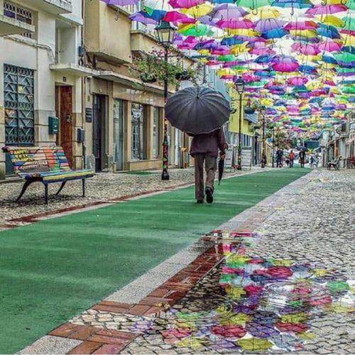 水溜りと傘