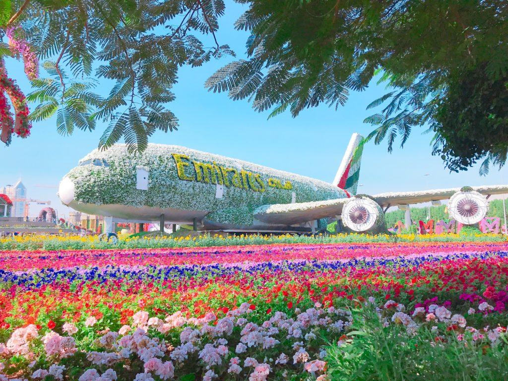 ドバイミラクルガーデン 飛行機