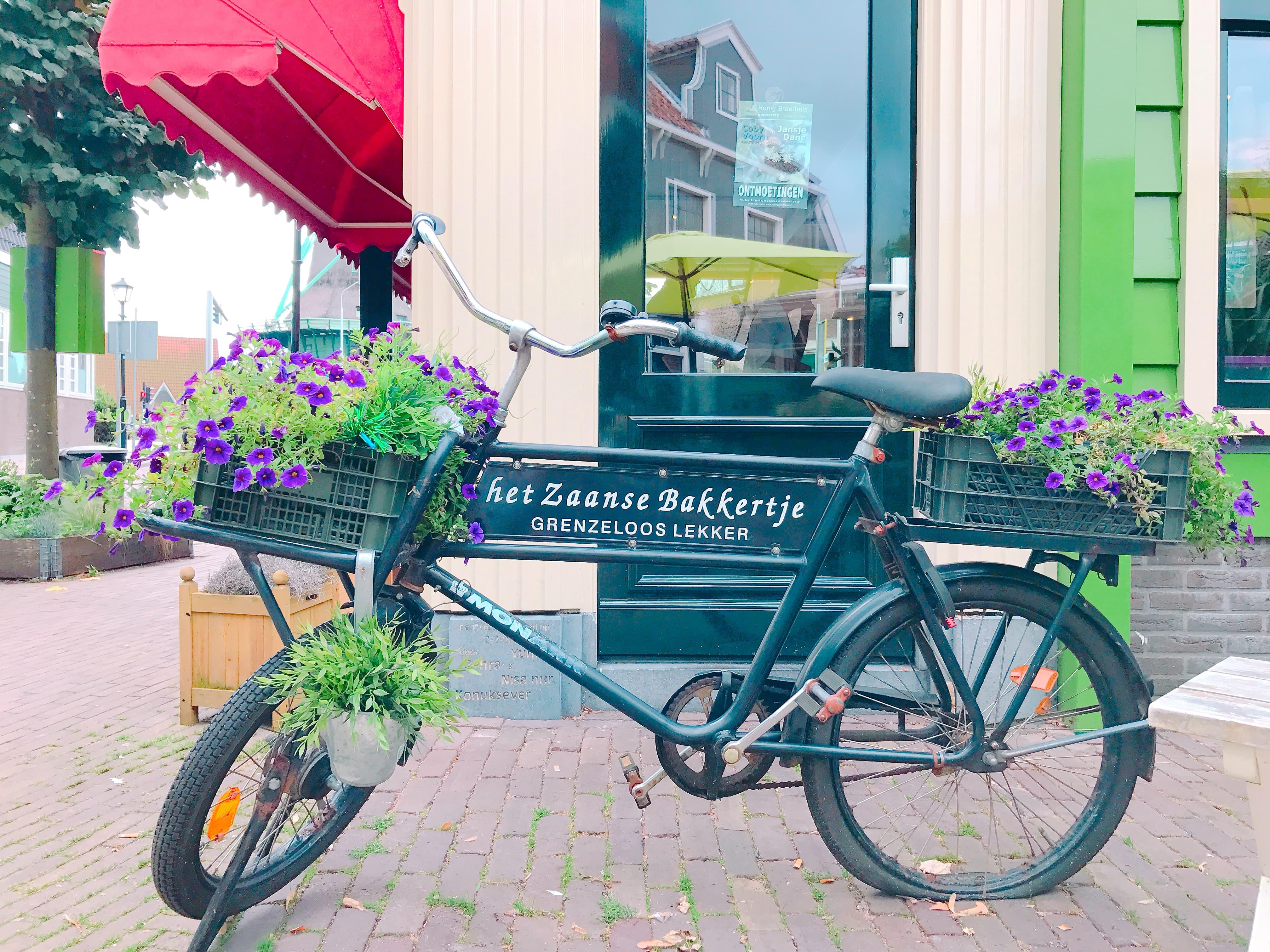 オランダ ザーンデイクの自転車