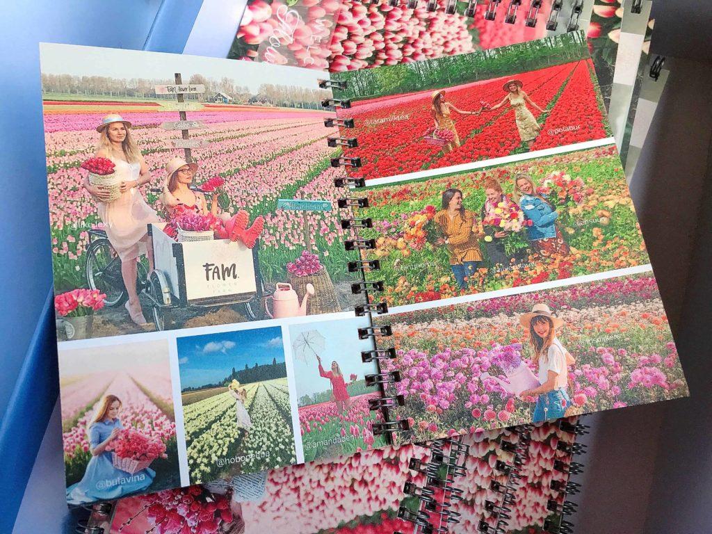 FAM Flower farm パンフレット